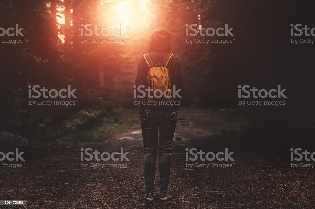 Traveler with backpack walking in a foggy forest at sunset stock photo