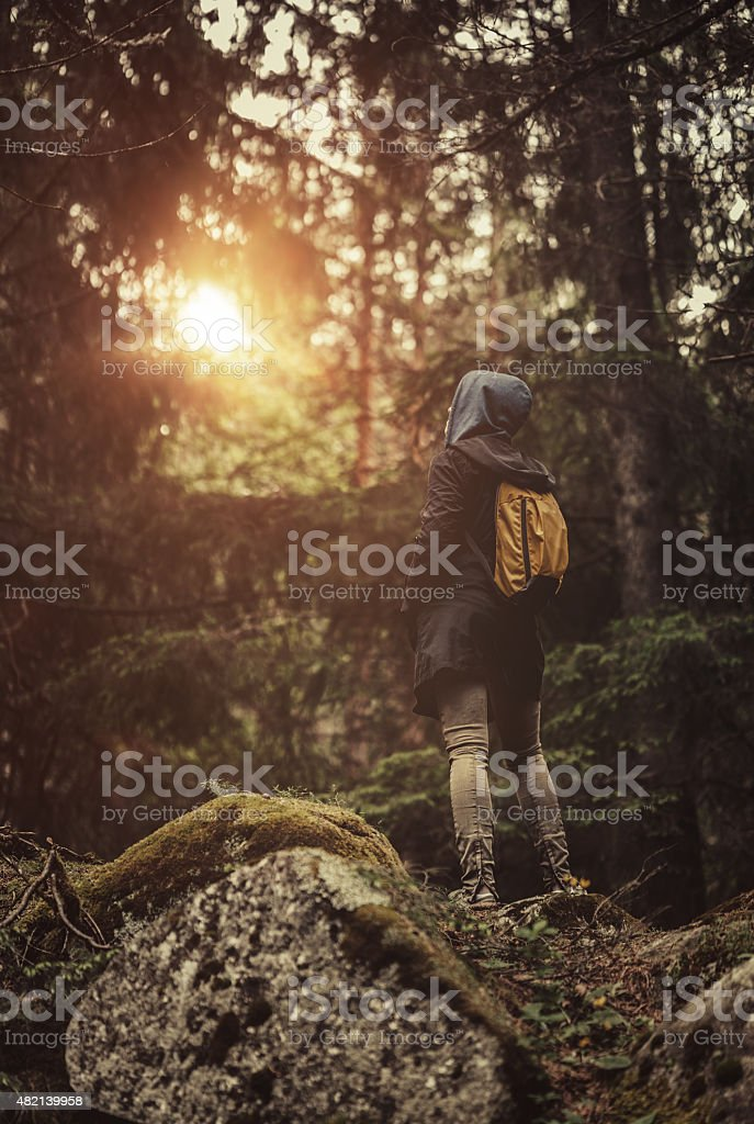 Traveler with backpack walking in a misty forest at sunset stock photo