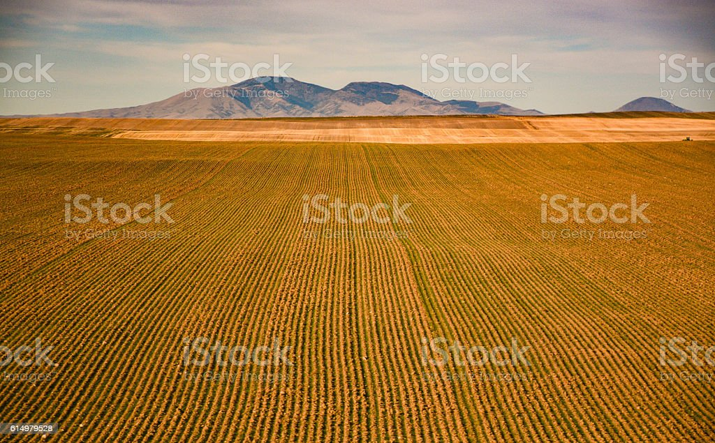 Traveling Montana State stock photo