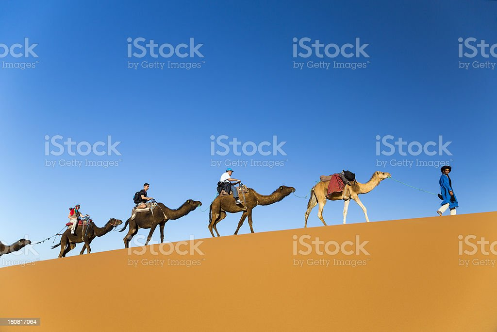 Traveling on Camels stock photo