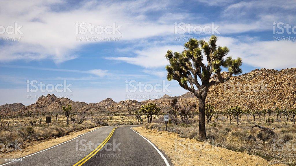 Traveling through Joshua Tree National Park stock photo
