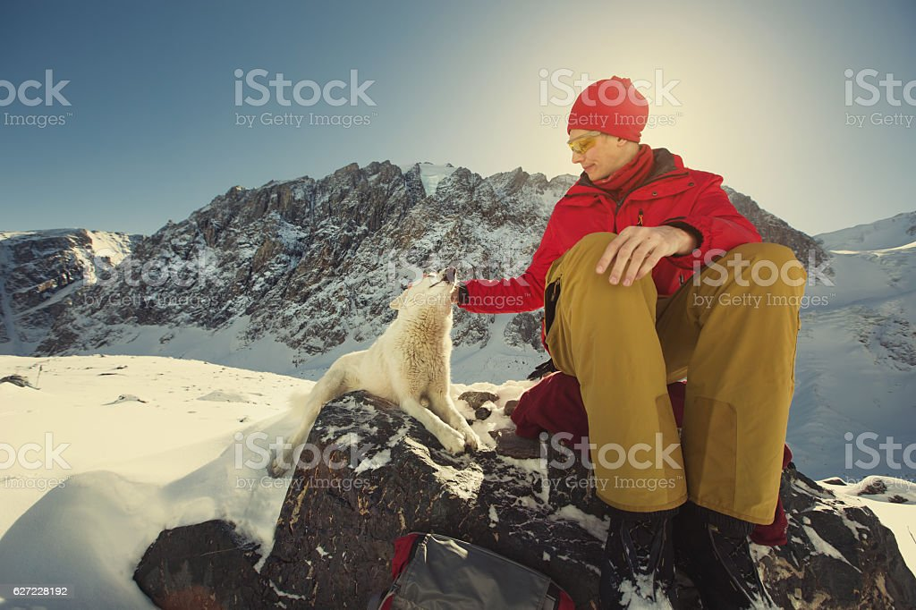 Traveller man with white dog in snow mountains landscape stock photo
