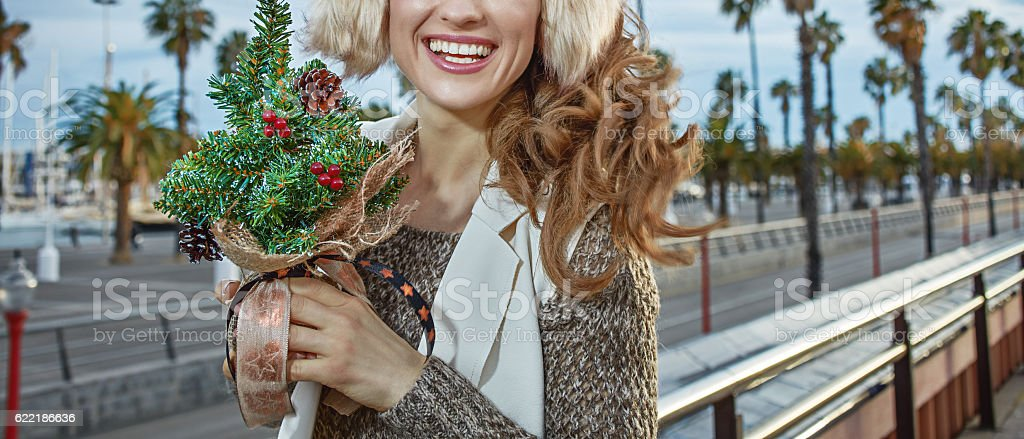 traveller woman with little Christmas tree looking into distance stock photo