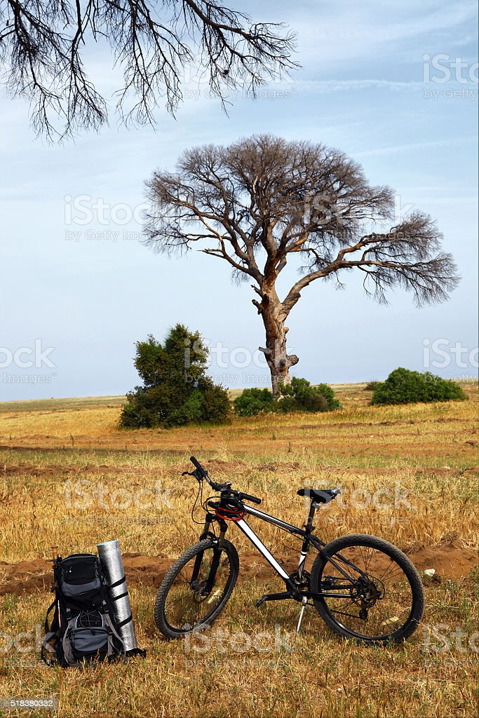 traveller's backpack and bicycle under a tree stock photo