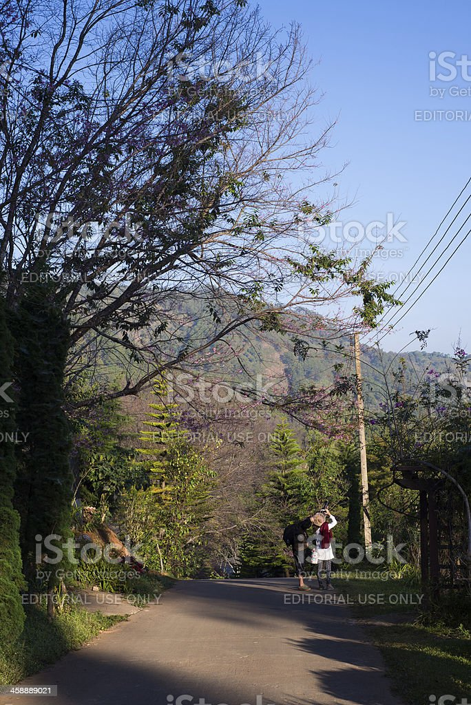 Travellers take a photo during travel session royalty-free stock photo