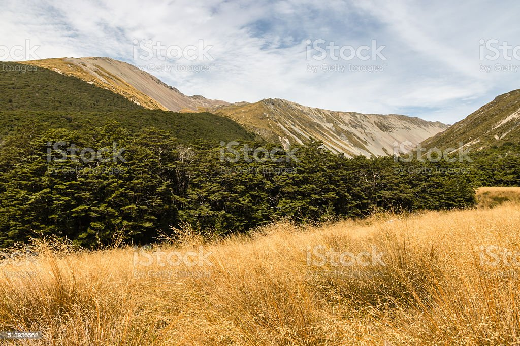 Travers Range in Nelson Lakes National Park stock photo