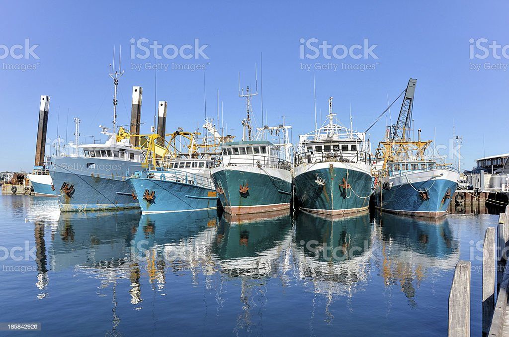 Trawlers in a Harbour stock photo