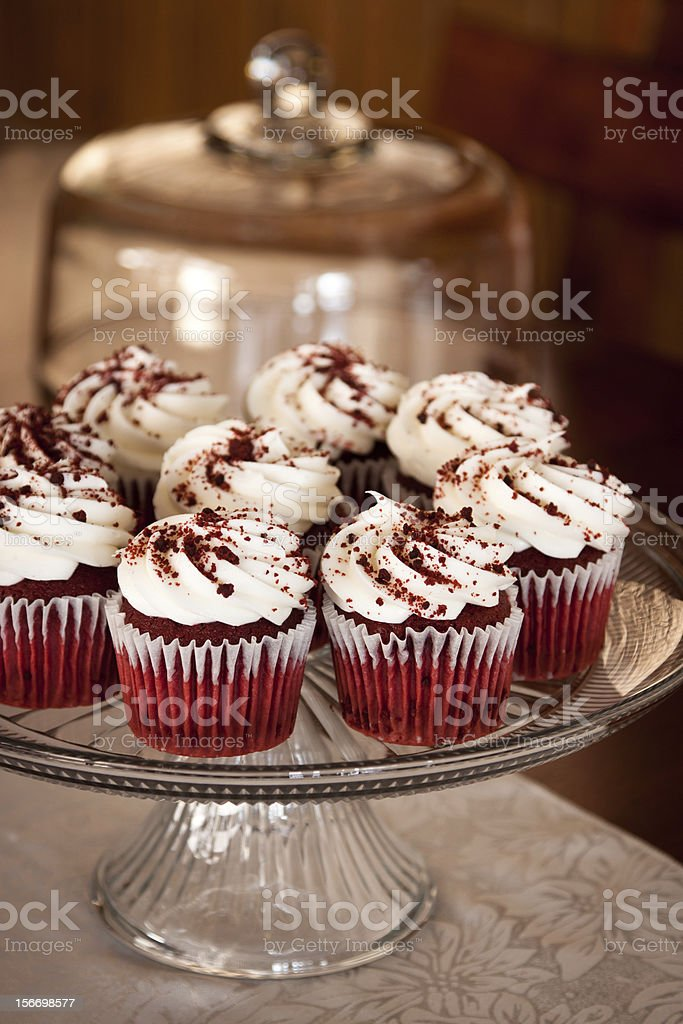Tray of cupcakes stock photo