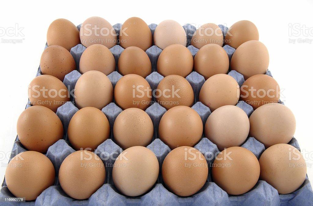 Tray of Eggs stock photo