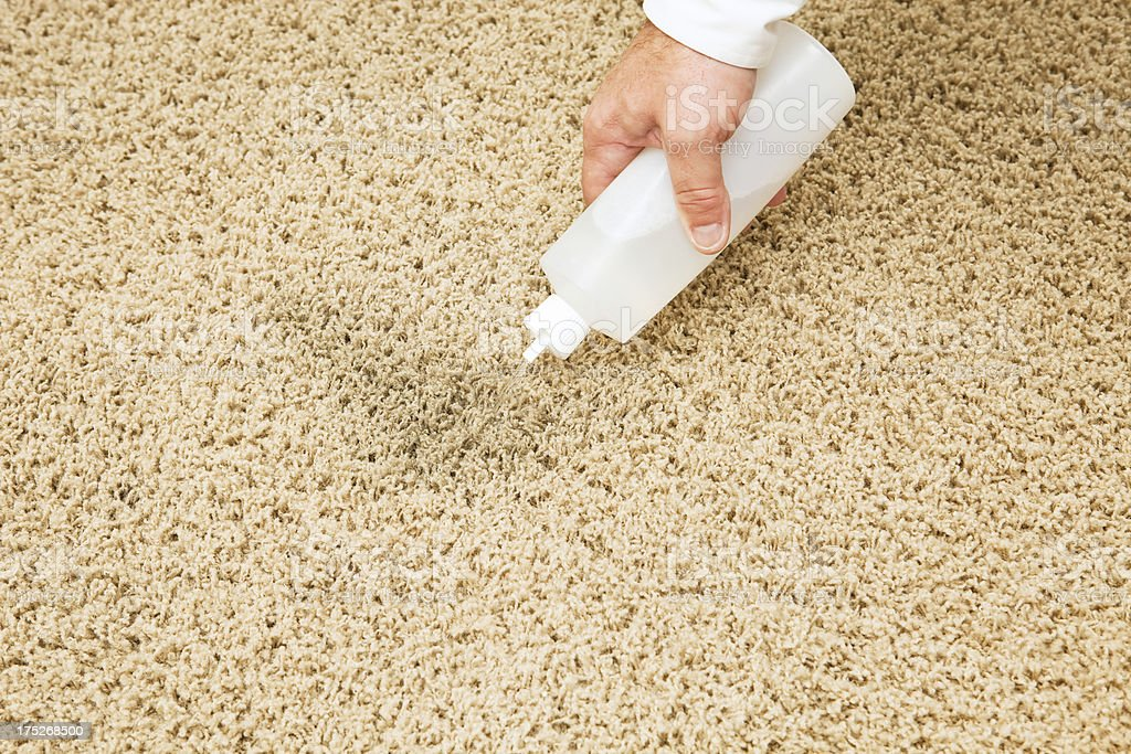 Treating Carpet Stain with Squeeze Bottle stock photo