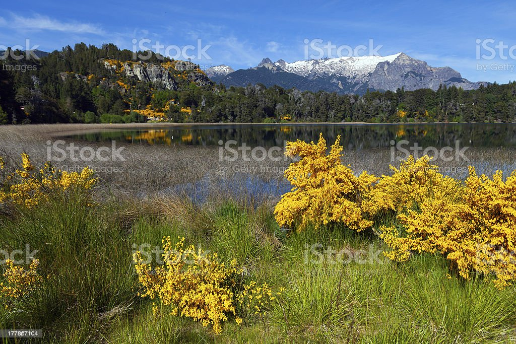Trebol lagoon, Patagonia, Argentina royalty-free stock photo