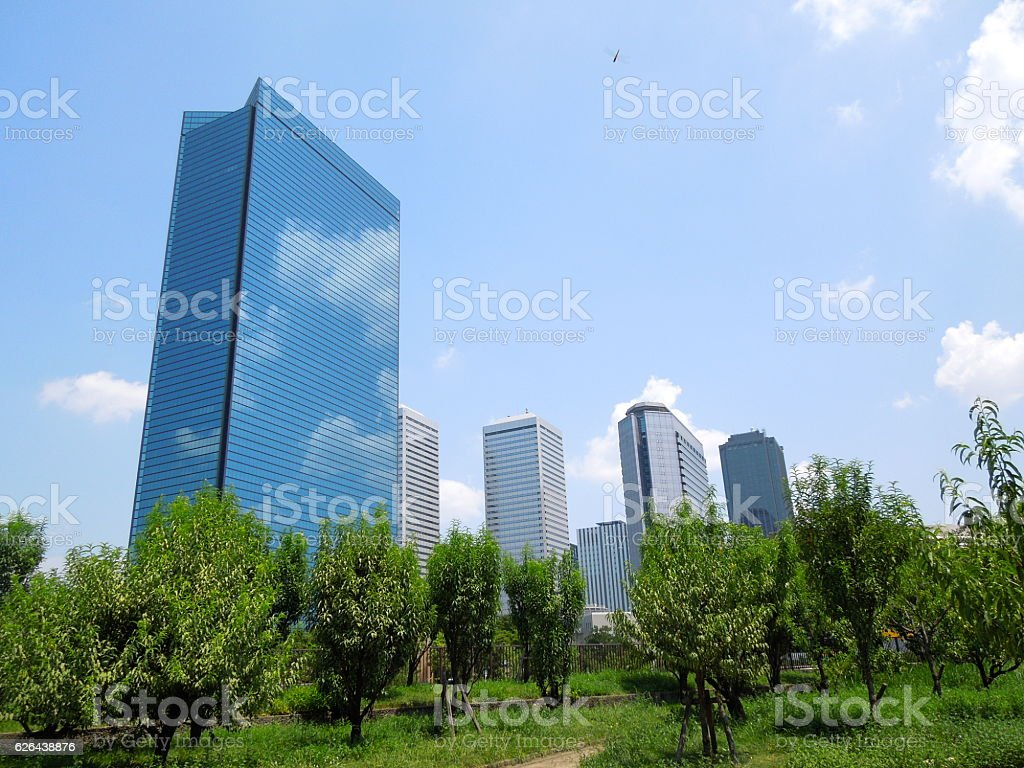 tree and buildings stock photo