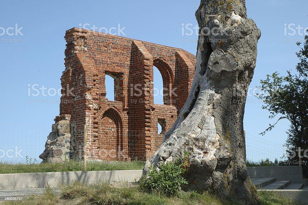 Tree and church ruins stock photo