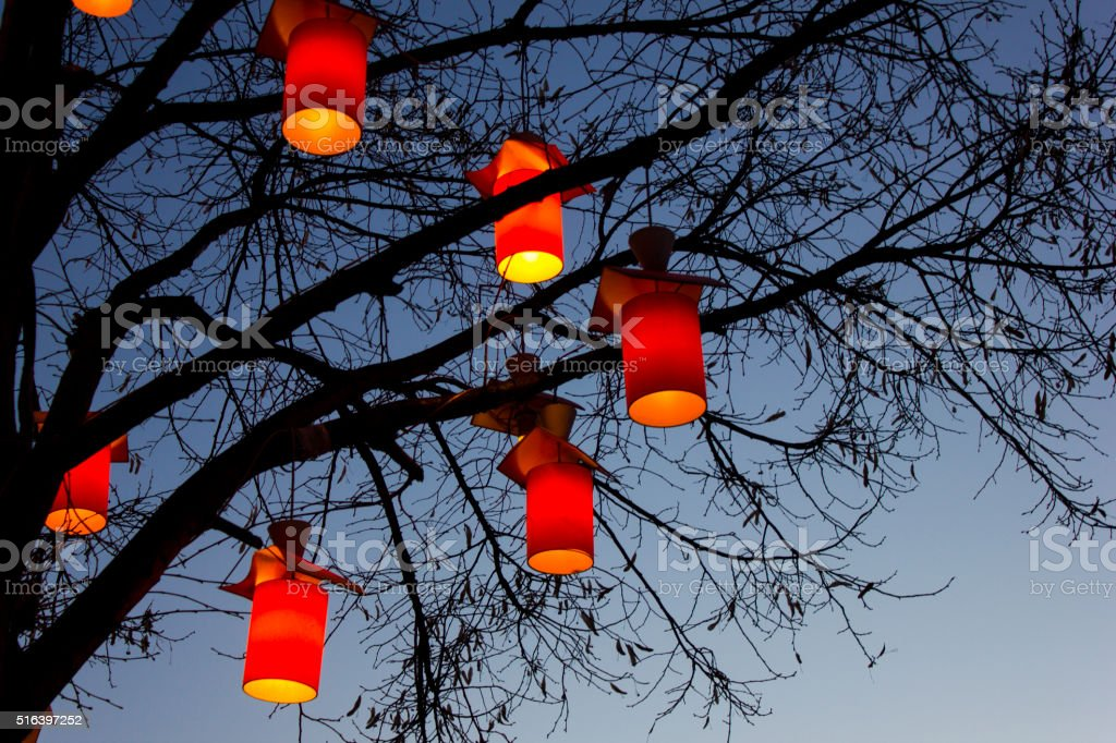 Tree and lights at night. stock photo