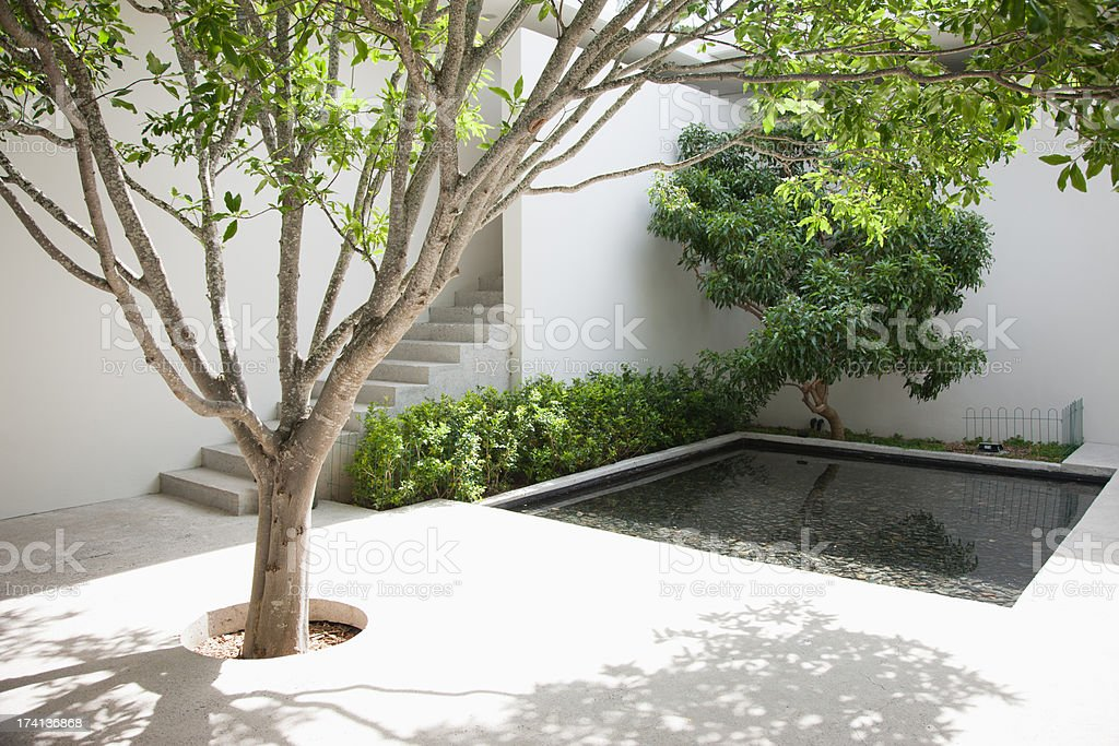Tree and pool in courtyard stock photo