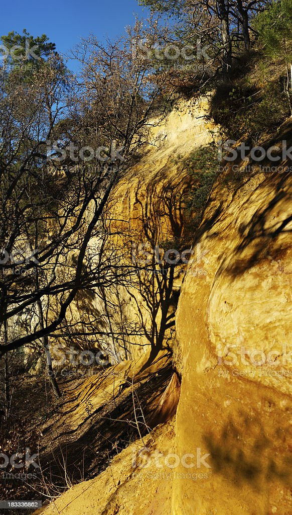tree and shadow against clay cliff stock photo