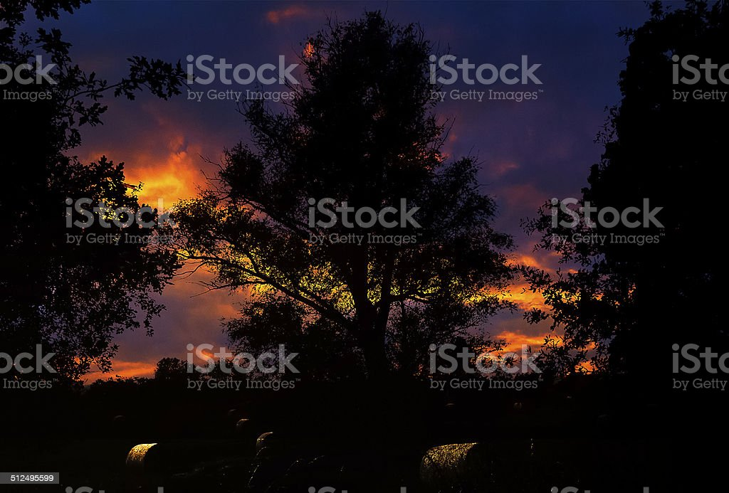 Tree and straw bales before surreal evening sky stock photo