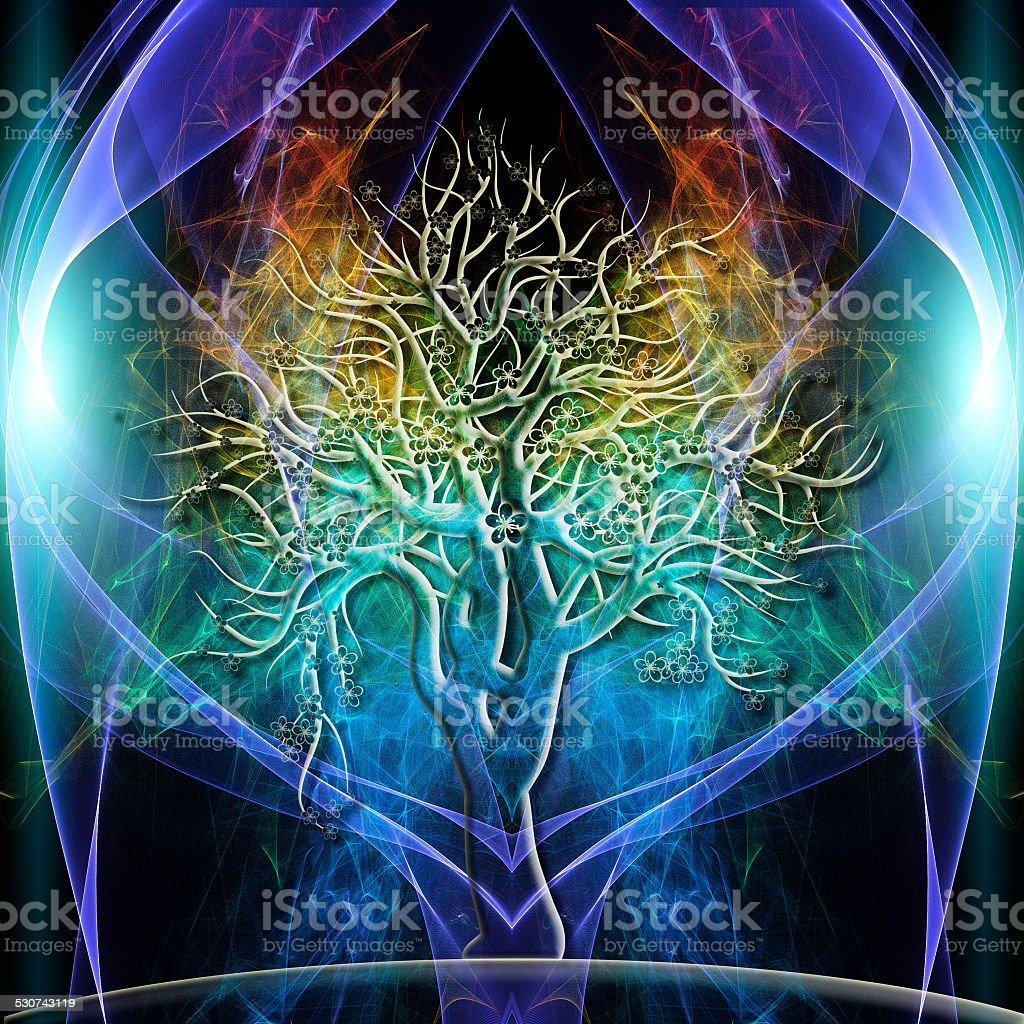 Tree Aura stock photo