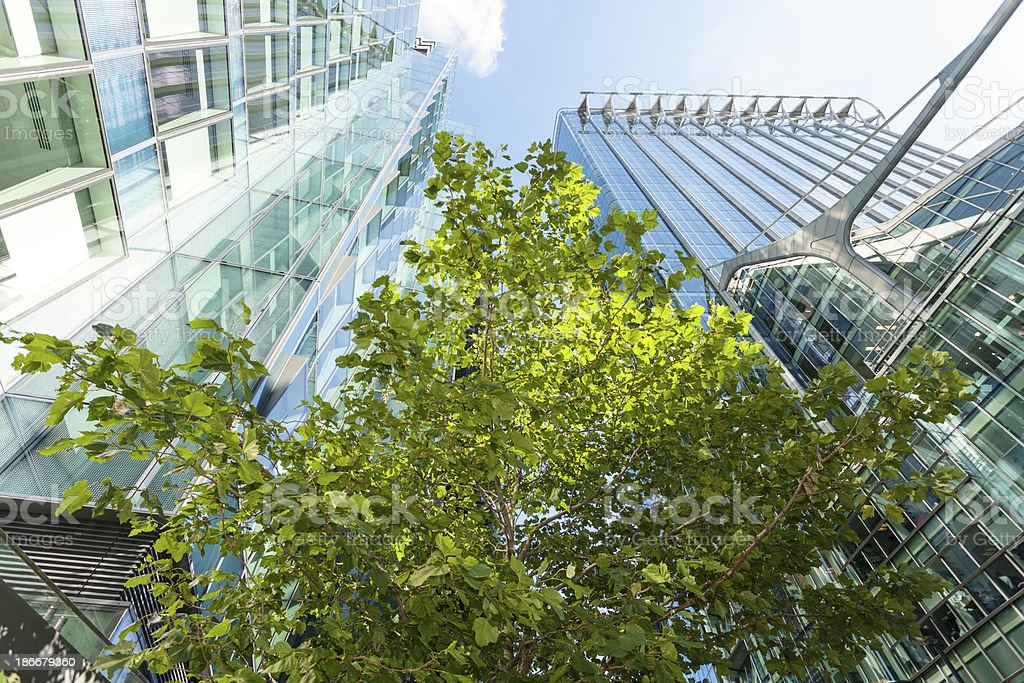 Tree Between Modern office Buildings, London, England royalty-free stock photo
