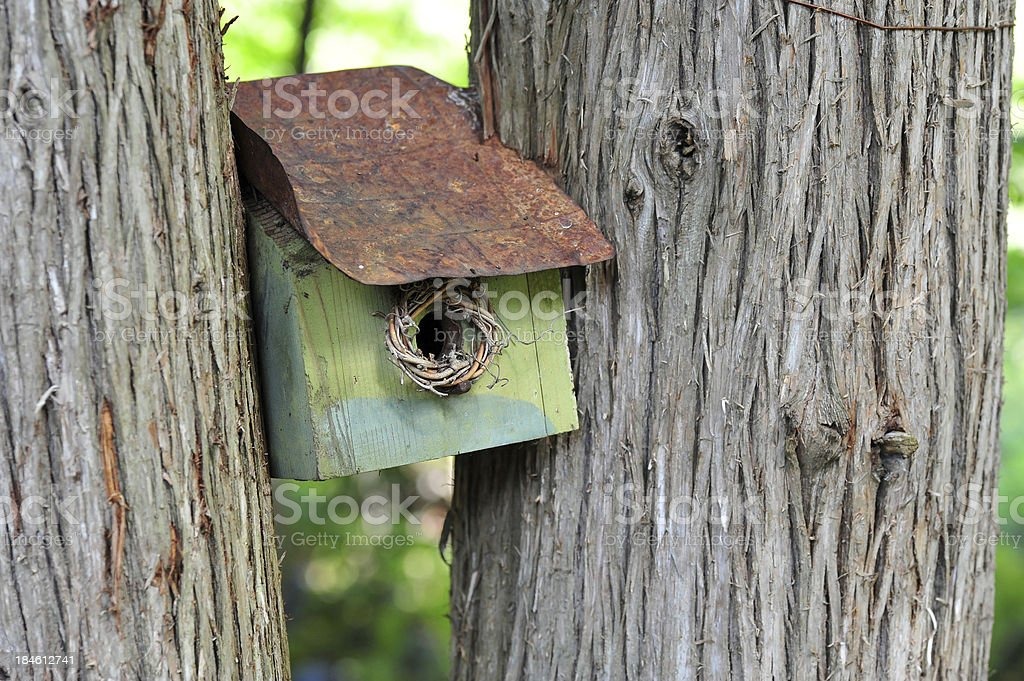 Tree Birdhouse royalty-free stock photo