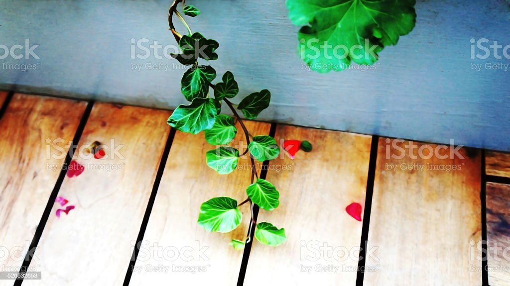 나무 지점, 목재 및 돌담 애니메이션, 장미 꽃잎 royalty-free 스톡 사진