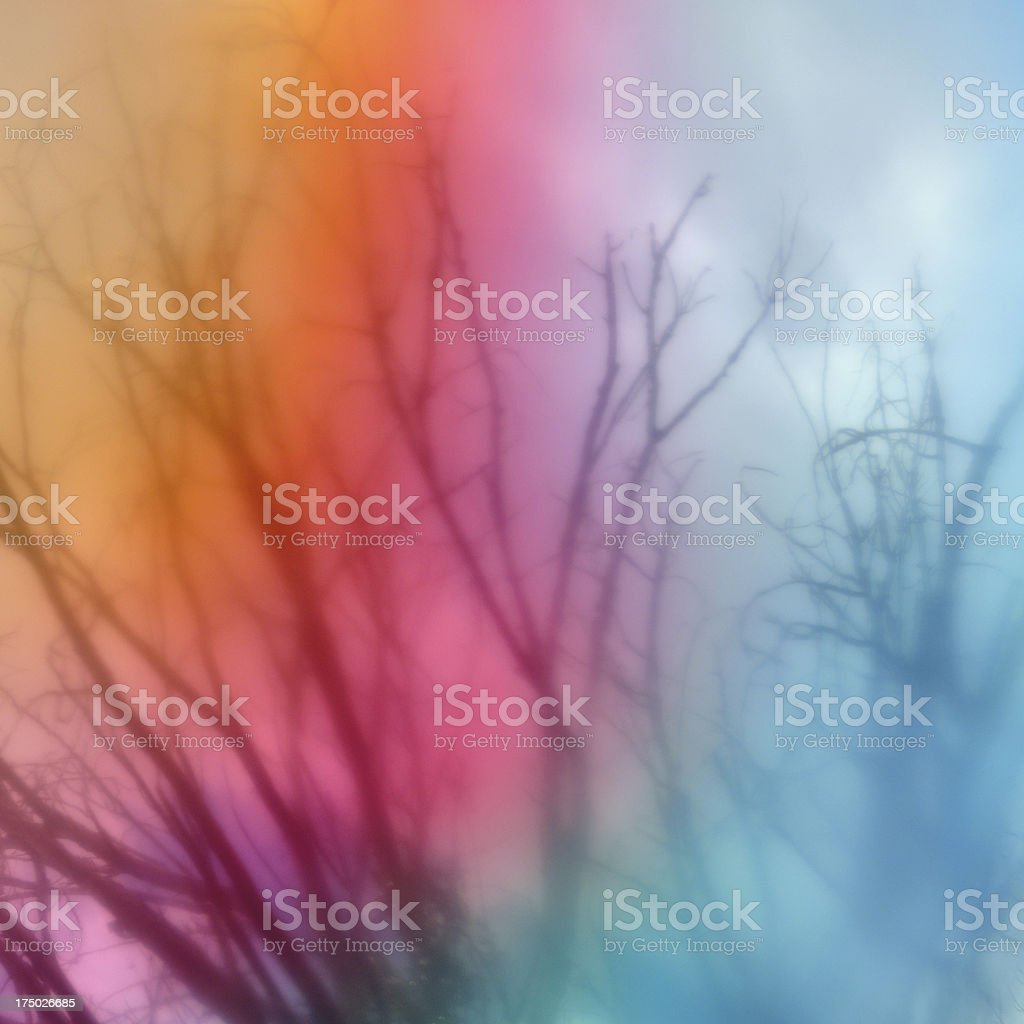 tree branches blur nature abstract royalty-free stock photo