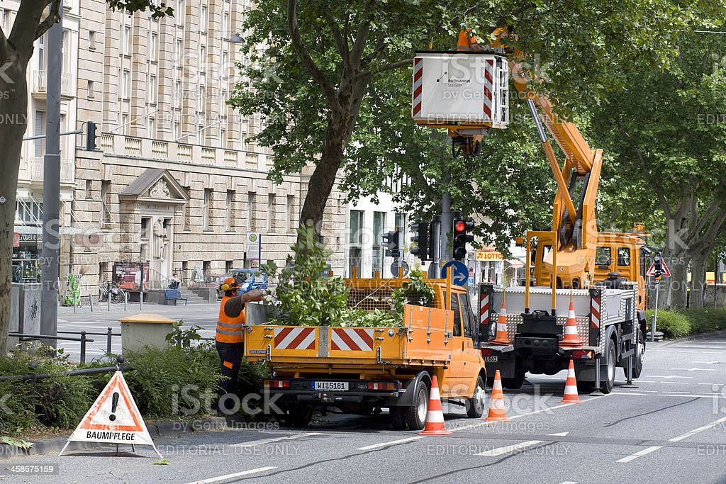 Tree care service in the center of Wiesbaden, Germany stock photo