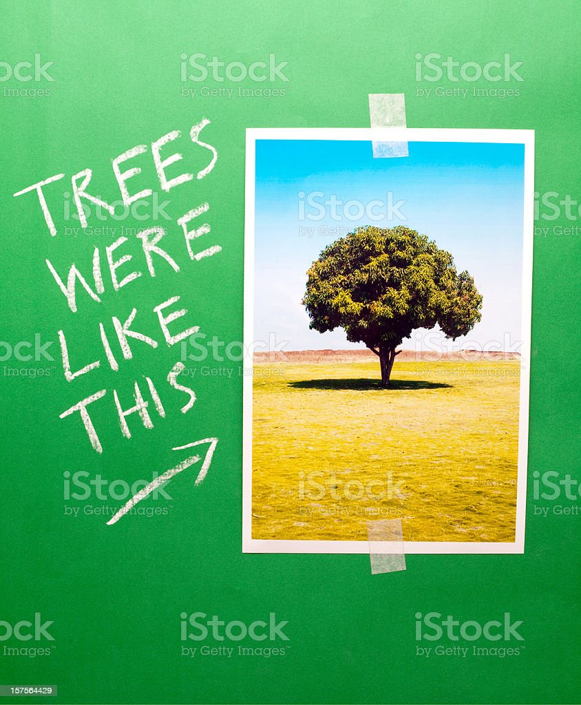 Tree Conservation Save Trees Conceptual image Chalk Greenboard Vertical royalty-free stock photo