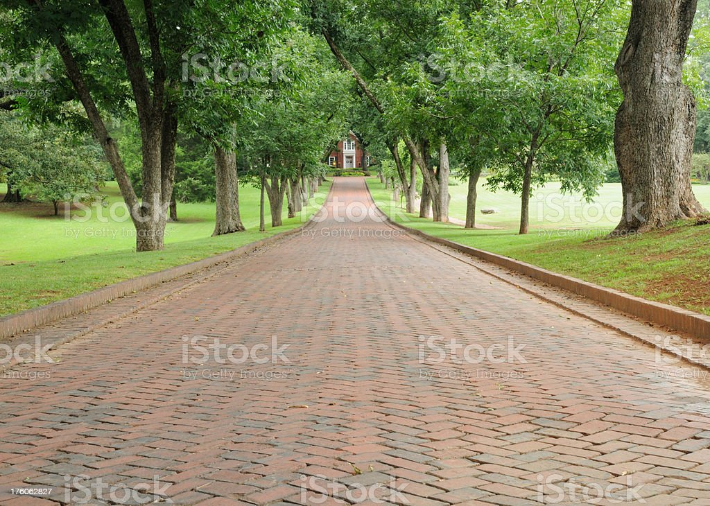 Tree covered brick driveway to mansion royalty-free stock photo