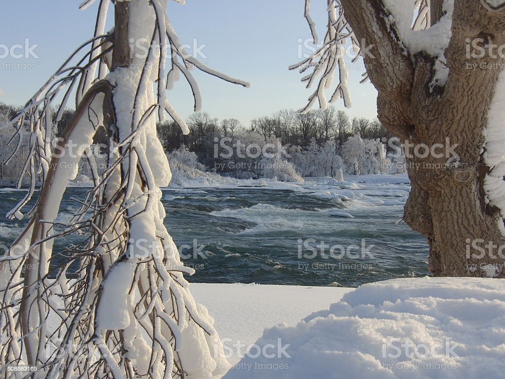 Tree covered of snow before a rapid stock photo