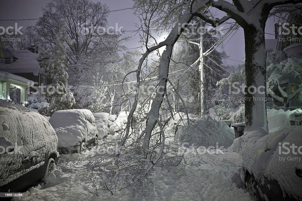 Tree Fallen in Street With Snow stock photo