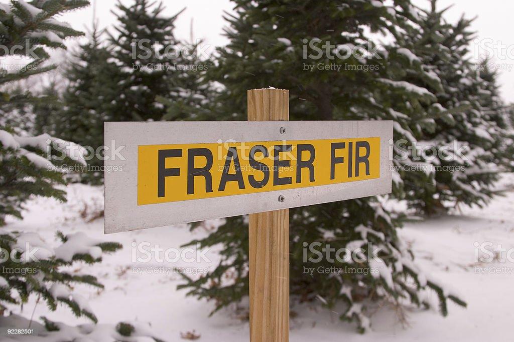 Tree Farm Sign 1 royalty-free stock photo