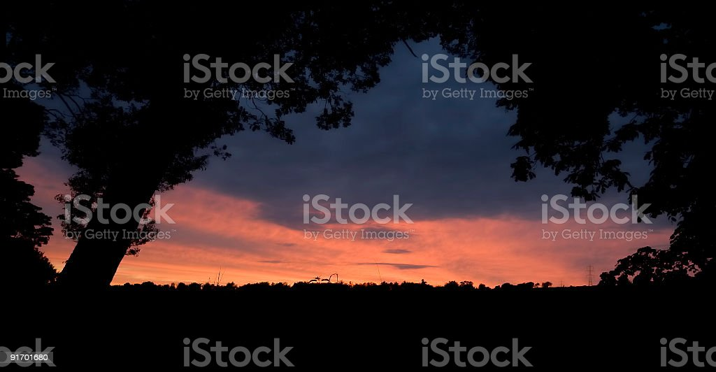 Tree framed silhouette with a beautiful sunset in Central Scotland. stock photo