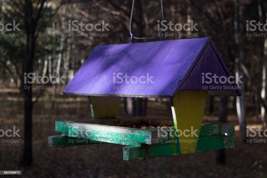 tree house for the birds, cheerful apartment stock photo