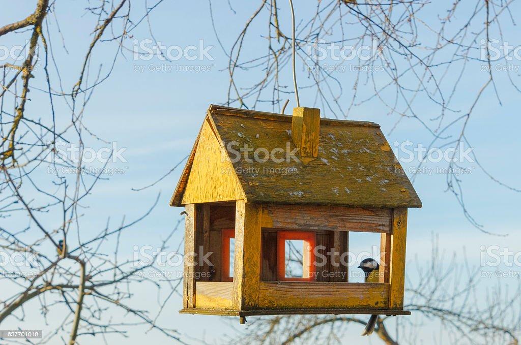 tree house for the birds, stock photo