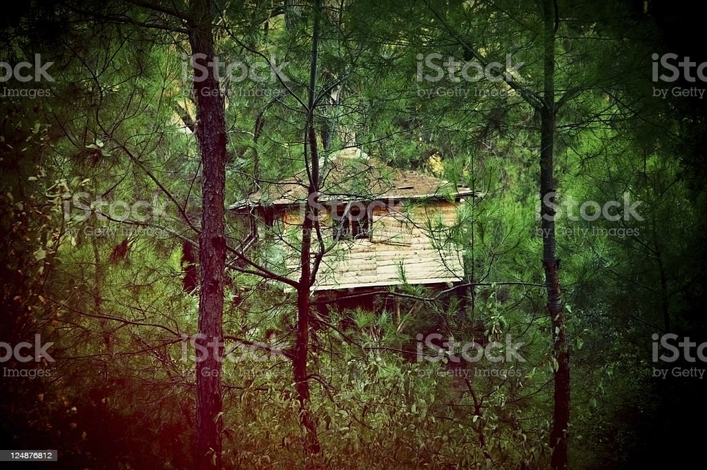 Tree House In Woods royalty-free stock photo
