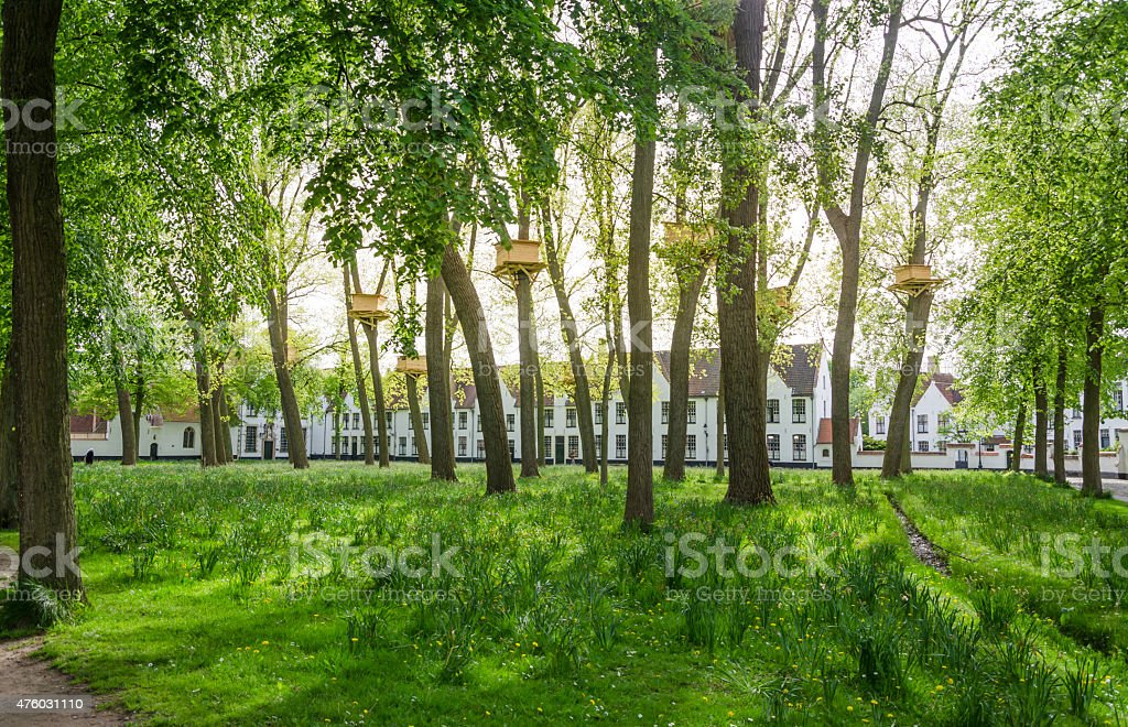 Tree Houses in the Beguinage Garden in Bruges stock photo