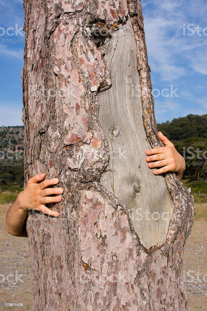Tree Hugger royalty-free stock photo