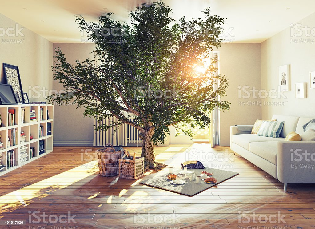 tree in a room stock photo