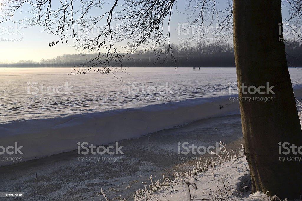 木の冬の風景。 ロイヤリティフリーストックフォト