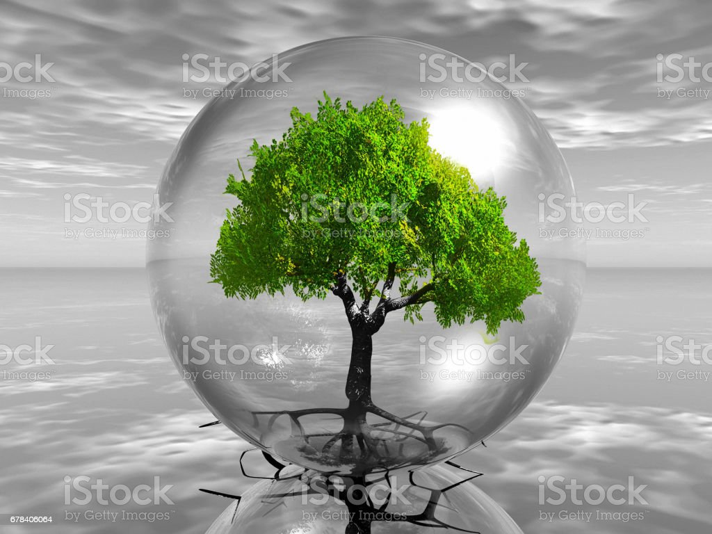 Tree in bubble stock photo