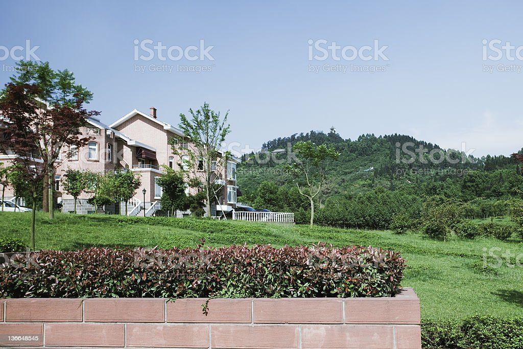tree in holiday village royalty-free stock photo