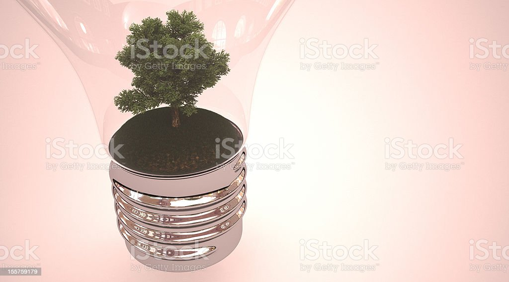 tree in light bulb royalty-free stock photo
