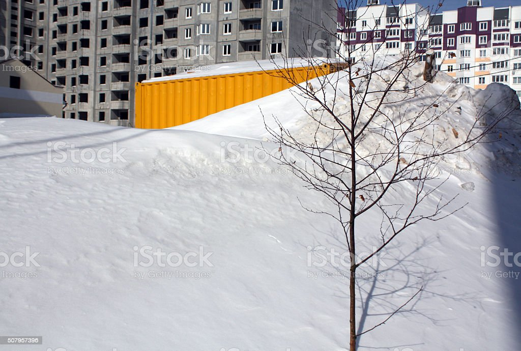 Tree in snow on construction site. stock photo