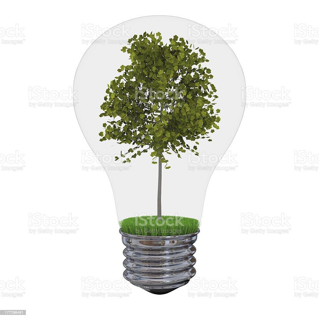 Tree inside lightbulb royalty-free stock photo