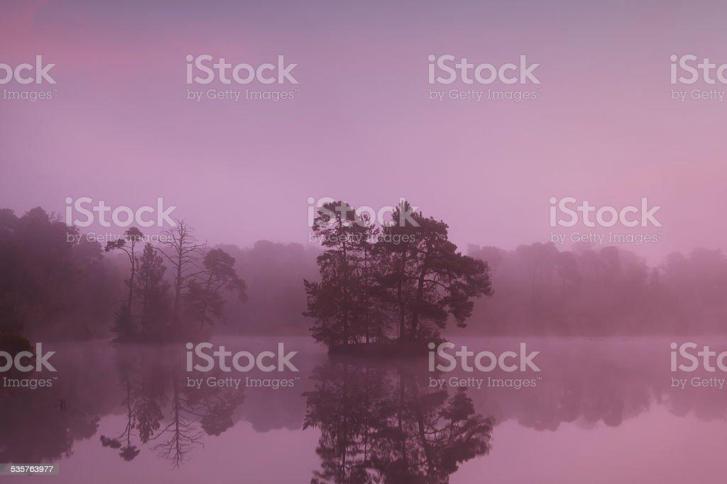 tree islands on lake at sunrise stock photo