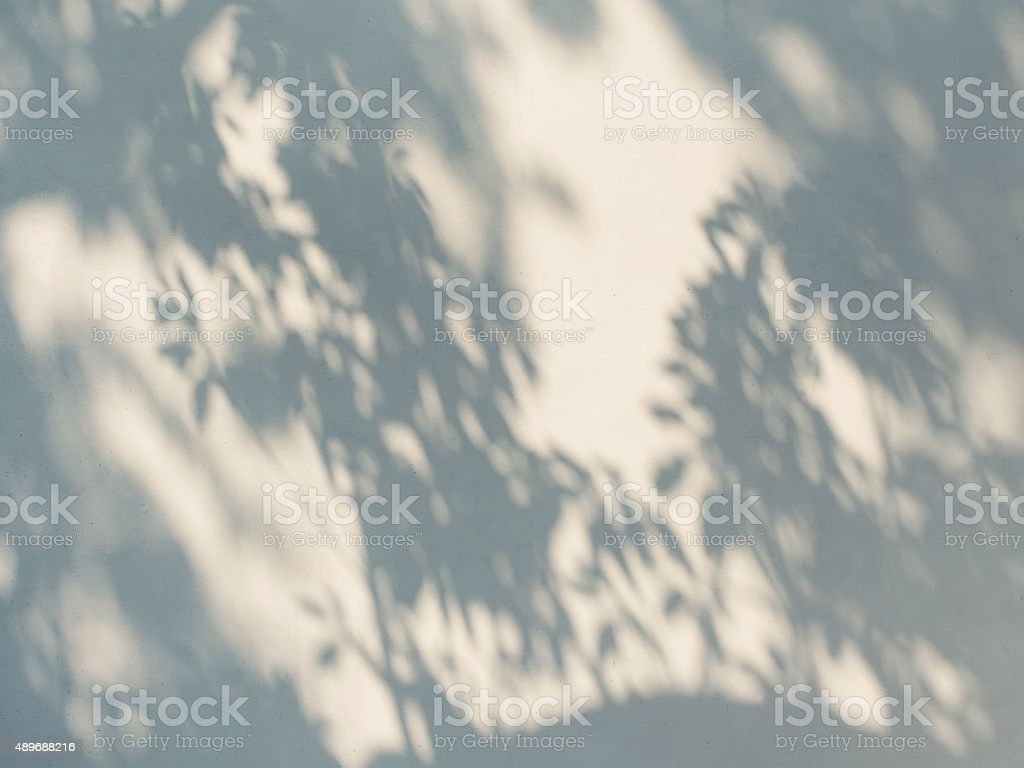 Tree leaves shadow on wall stock photo