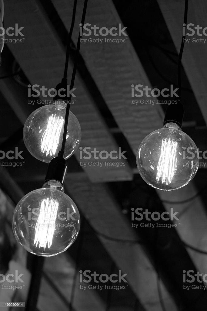 Tree light bulbs stock photo