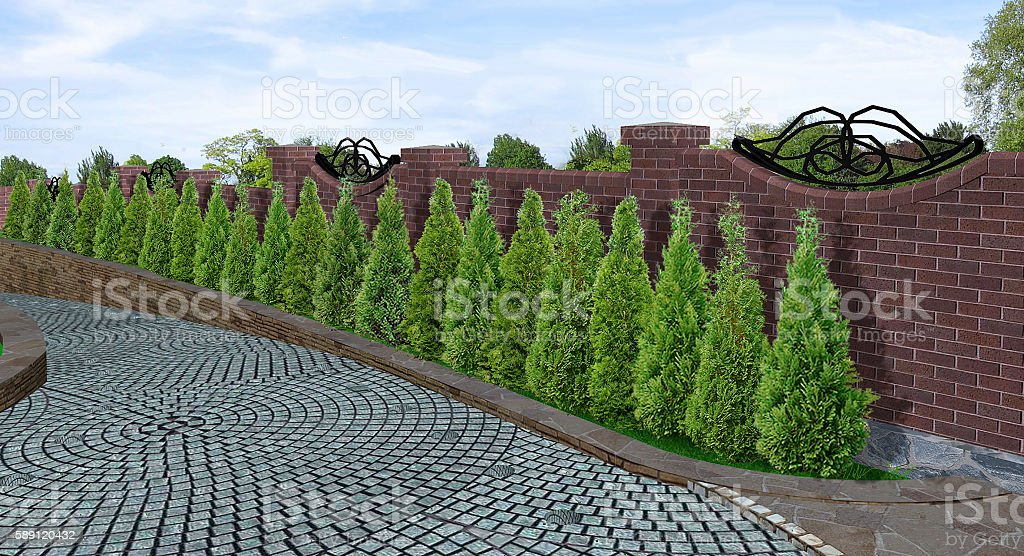 Tree line alley, 3d render stock photo