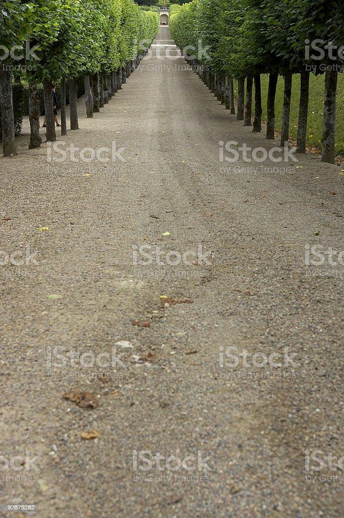 Tree lined gravel track leading to garden, chateau de villandry, royalty-free stock photo